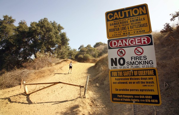 Griffith Park coyotes, mountain lions and rattlesnakes